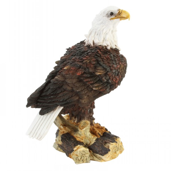 Animal Planet Standing Eagle On Tree