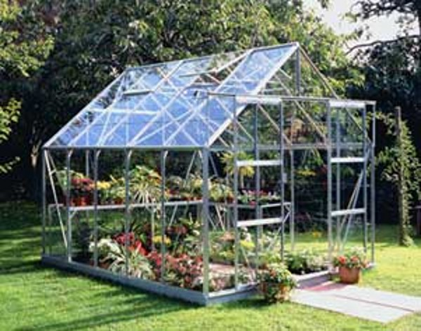 ALUMINIUM MAGNUM 10ft x 8ft GREENHOUSE with HORTICULTURAL GLASS