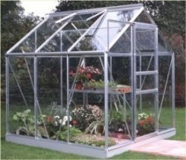 ALUMINIUM POPULAR 6ft x 6ft GREENHOUSE with TOUGHENED GLASS